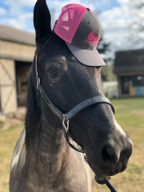 TRR Horse and Hat
