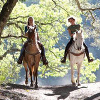 Two horse riders